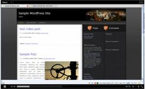 Post Format: Video (WordPress.tv)
